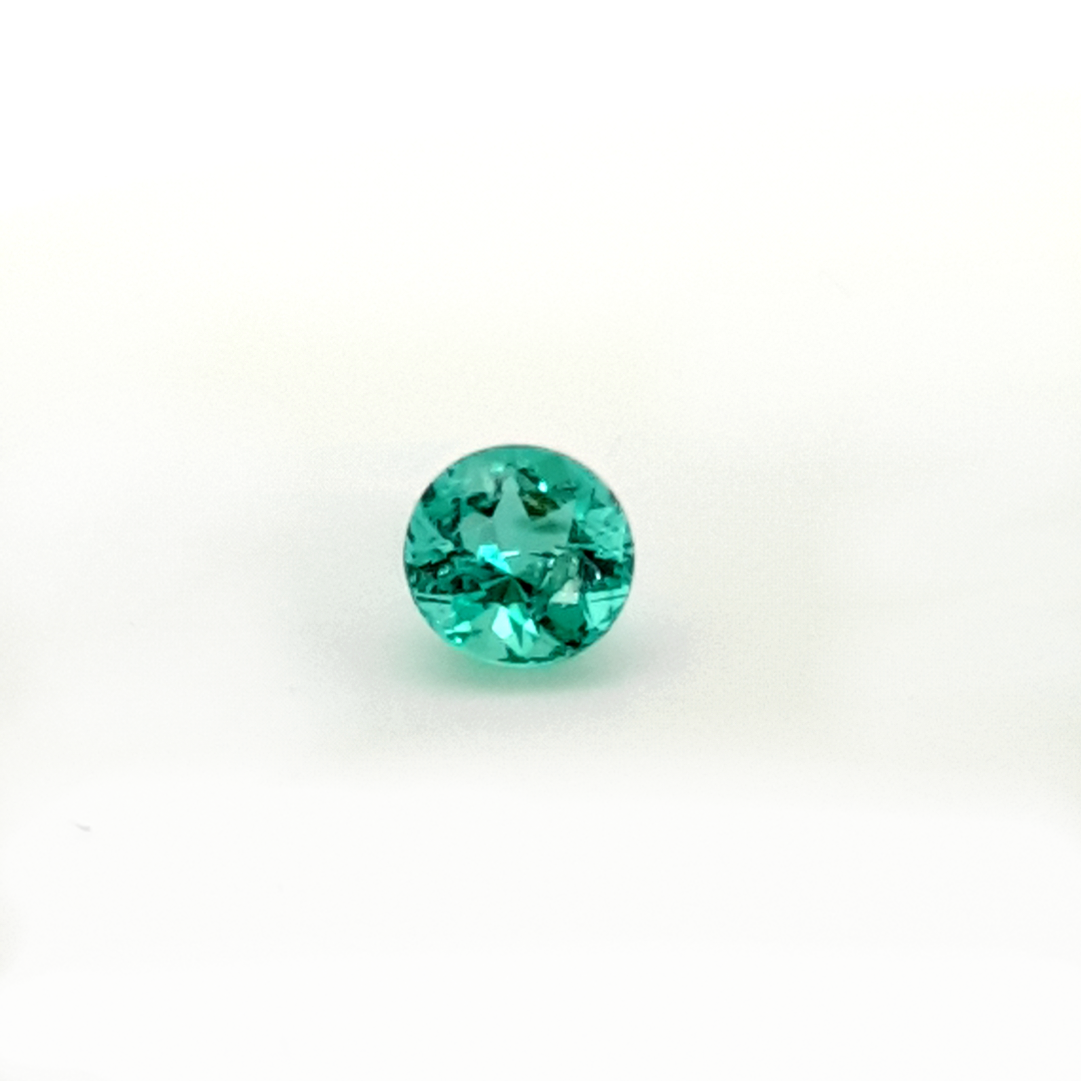 0,98ct. Round Emerald from Colombia EMB21C5 ClaudiaHamann__2021-03-29-23-54-23